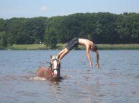 7- daagse vakantie bij Bergemo met Paard & Beleving!